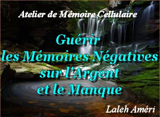 CD de l'Atelier de Mémoire Cellulaire sur l'Argent et le Manque