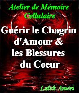 CD de Mémoire Cellulaire pour Guérir le Chagrin d'Amour