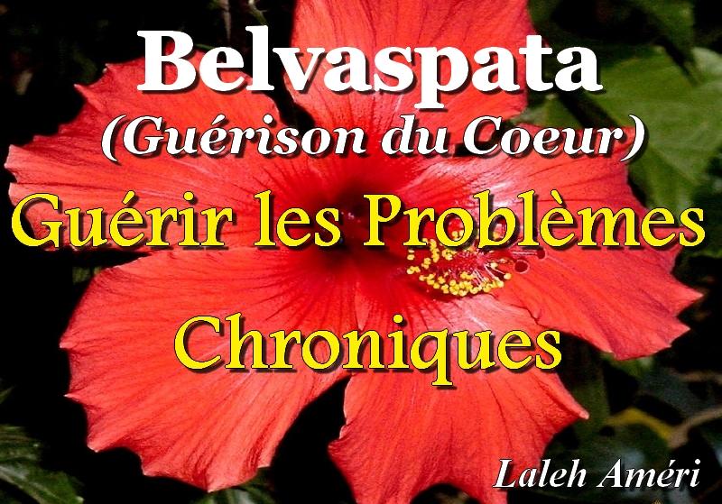 Nouveau CD de Guérison des Problèmes Chroniques: N°4