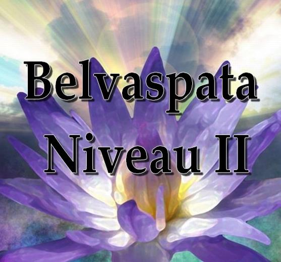 Séminaire d'Initiation au Niveau II du Belvaspata