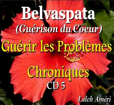 5ème CD de Guérison des Problèmes Chroniques