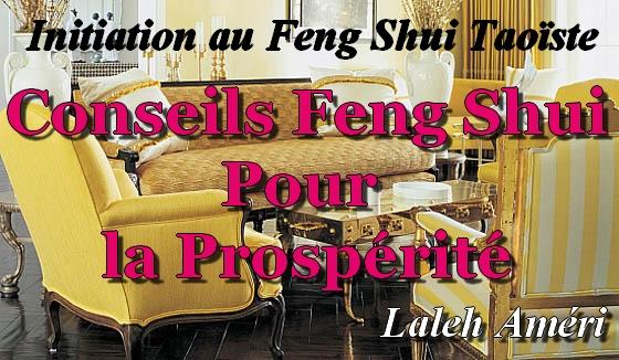 CD: Conseils Feng Shui pour la Prospérité