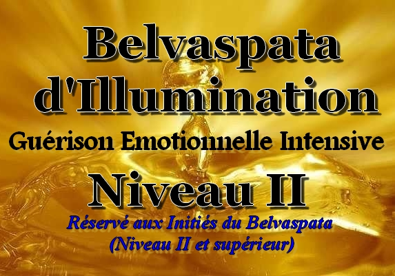 CD et Ebook de Belvaspata pour la Guérison Émotionnelle Intensive Niveau II