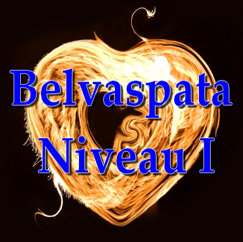 Initiation Belvaspata Niveau I