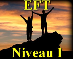 Séminaire d'Introduction à l'EFT 1