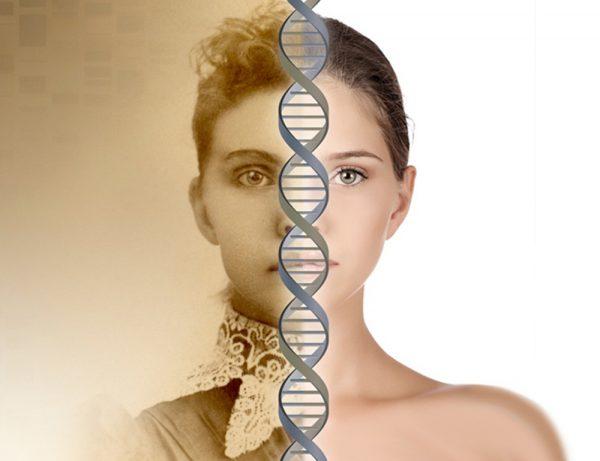Séances de Thérapie Transgénérationnelle et Prénatale