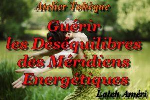 Déséquilibres des Méridiens Énergétiques