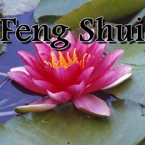 CD de Feng Shui