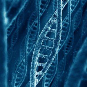 CD de Recodage de l'ADN